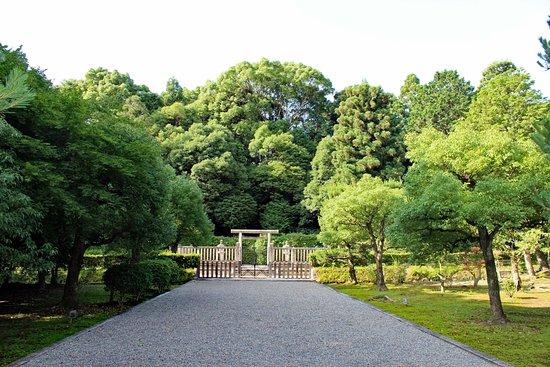 Emperor Kobun Cemetery