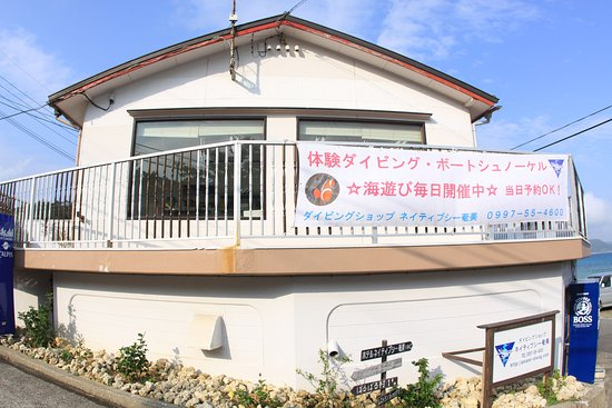 ‪Amami Oshima Diving Shop Native Sea Amami‬
