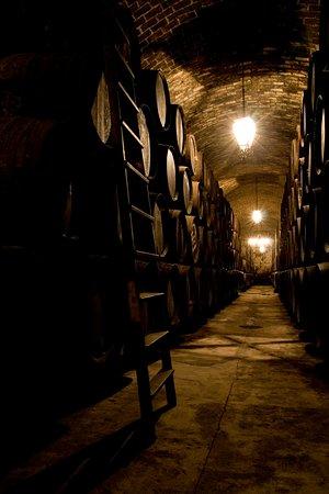 Montilla, Spanyol: Espectacular bodega subterránea donde se envejecen los vinos Fino y Pedro Ximénez.