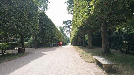 Sceaux, Frankrike: DSC_0873_large.jpg
