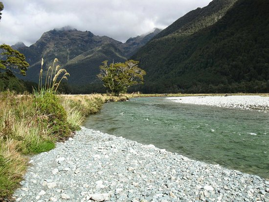 Fiordland National Park, New Zealand: IMG_1170_large.jpg