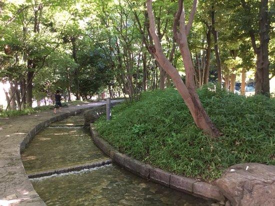 Takinogawa Park