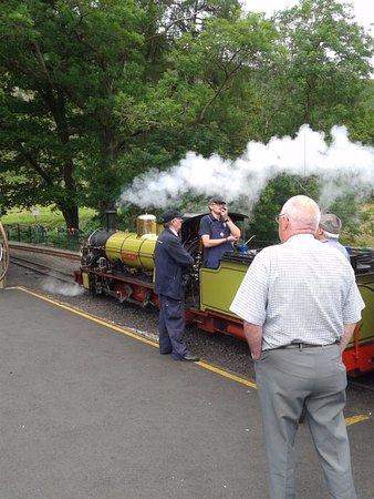 Ravenglass, UK: Dalegarth steam train
