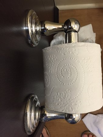 Ridgeland, Μισισιπής: As you can see, one side of this toilet paper holder I cleaned