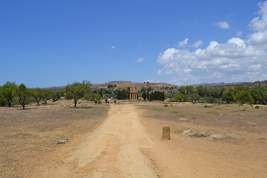Valley of the Temples (Valle dei Templi): una parte del percorso, in lontananza l'Ipogeo dei Dioscuri