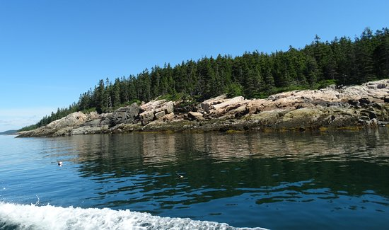 Winter Harbor, ME: Rugged Maine coastline