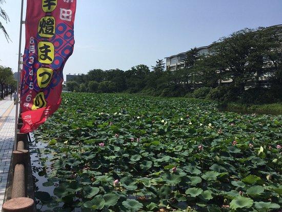 Akita, Japonya: photo0.jpg