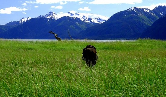 Seward, AK: Impressions from our trail ride