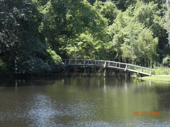 Bridge over pond to trail from gardens