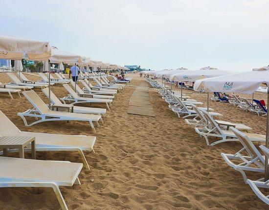 Hotel Volga  Calella  Espagne    Voir Les Tarifs  27 Avis Et 732 Photos