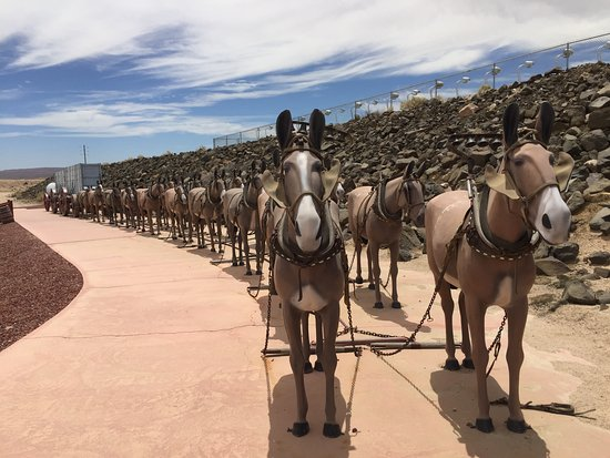 Boron, แคลิฟอร์เนีย: Mule teams of 20 were used in the early days to transport borax through the desert routes.