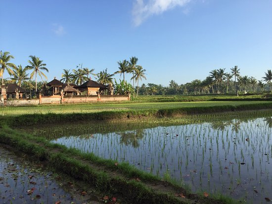 The Chedi Club Tanah Gajah, Ubud, Bali – a GHM hotel: photo0.jpg