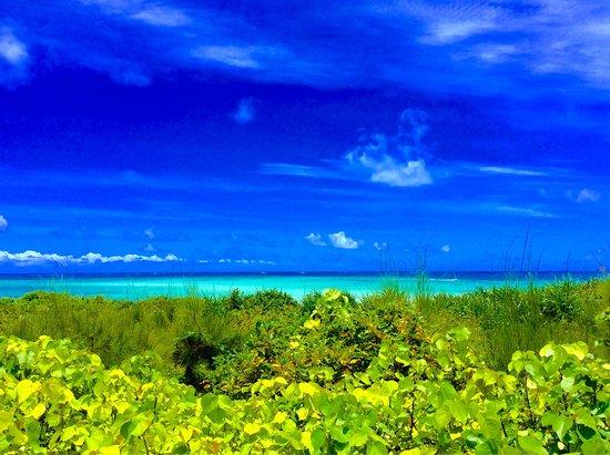 Ojima Coast : photo0.jpg