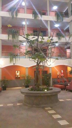 Eco Inn Cusco: 20160726_175510_large.jpg