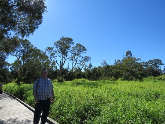 Rathdowney, Australia: We visited so many different eco regions with Ronda, it was perfect to see so much in the area!