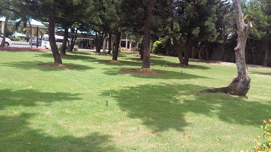 Dreams La Romana : Me encanta el cuidado que tienen con las áreas verdes.