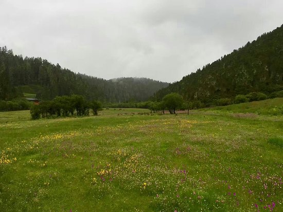 Shangri-La County, China: A very wet day in Potatso Park