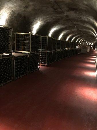 Roa, İspanya: sehr schöne Keller fast wie in der Champagne