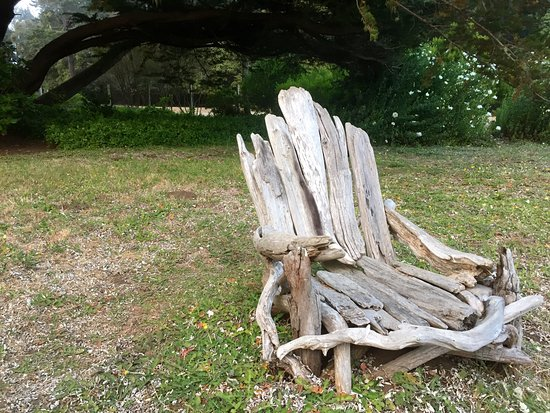 Little River, Californië: Loved this cool chair!