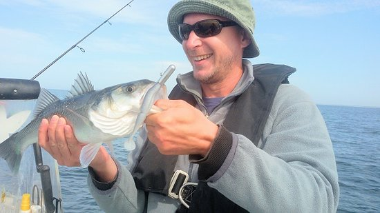 LocationPhotoDirectLink g d i Le Loup Bar Fishing Guide Sainte Helene Morbihan Brittany