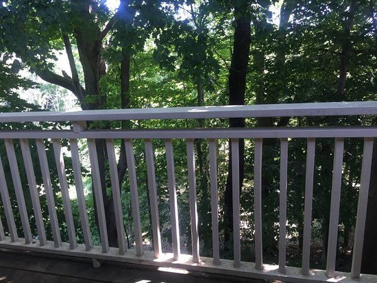 Saugatuck, MI: Backyard (and entrance) view from a second floor apartment (A4)