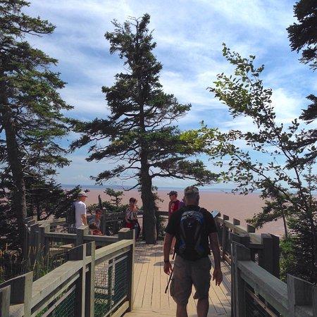 Hopewell Cape, Kanada: photo3.jpg