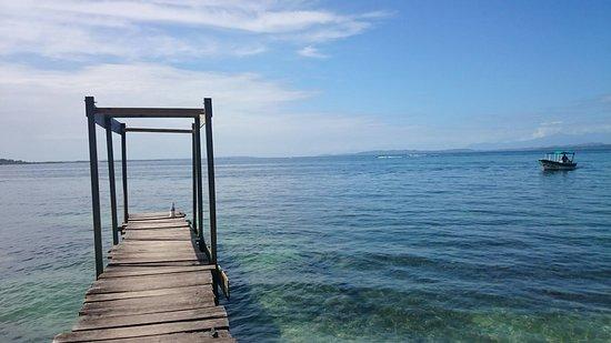 Carenero Island, Panama: DSC_1326_large.jpg
