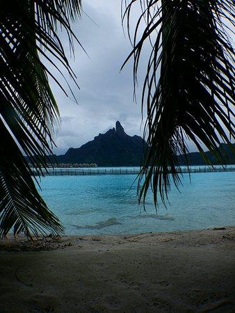 Eden Beach Hotel Bora Bora: DSCN0634_large.jpg
