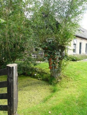 Haastrecht, Nederländerna: Vue sur l'appartement n°1 depuis le jardin avec son salon de jardin
