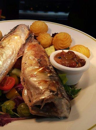 Menai Bridge, UK: Fresh mackerel
