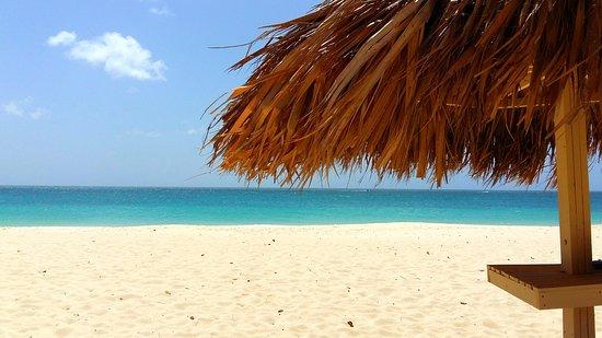 Dorado Eagle Beach Hotel Aruba Palm Villa Reviews Photos Price Comparison Tripadvisor
