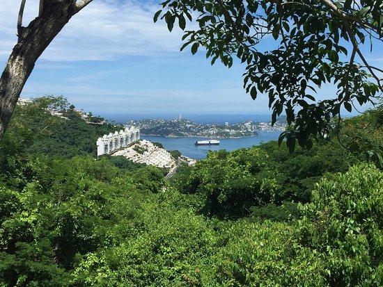 Acapulco Botanical Garden (Jardin Botanico de Acapulco): photo5.jpg