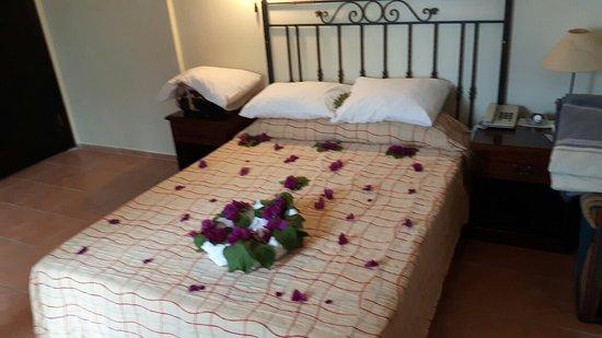 Meldi Hotel : 20160515_134904_large.jpg