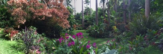 Hunte's Gardens: Just one stunning view of many