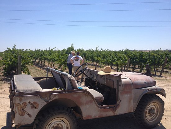 Paso Robles, Califórnia: Jeep Tour with Howie