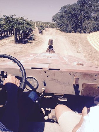 Paso Robles, Califórnia: View from the Jeep