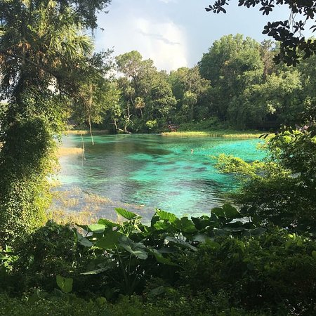 Rainbow Springs State Park Campground Reviews Dunnellon