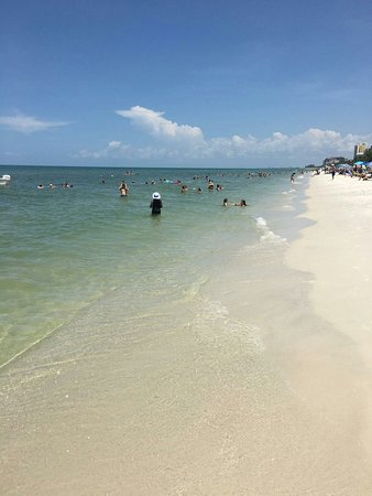 Vanderbilt Beach, FL: IMG_2977_large.jpg
