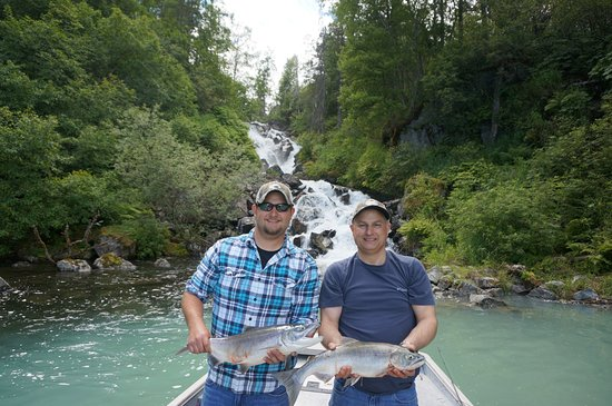 Kenai, AK: Limited out on sockeye. Beautiful scenery all around.