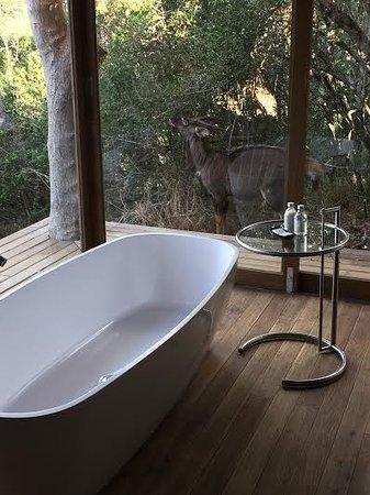 Kenton-on-Sea, แอฟริกาใต้: Bath and Nyala