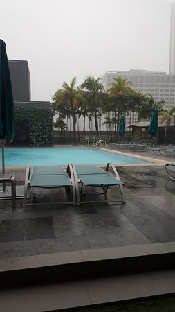 8 on Claymore Serviced Residences: Pool Side With Rain