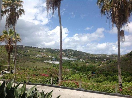 Sugar Bay Resort & Spa: View outside the entrance of Sugar Bay Resort