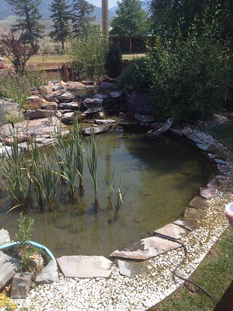 Irwin, ID: Pond out back