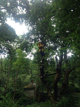 Killarney High Ropes Course : photo0.jpg