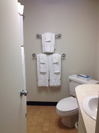 Fireside Inn & Suites at Lake Winnipesaukee: Lots of towels in the bathroom