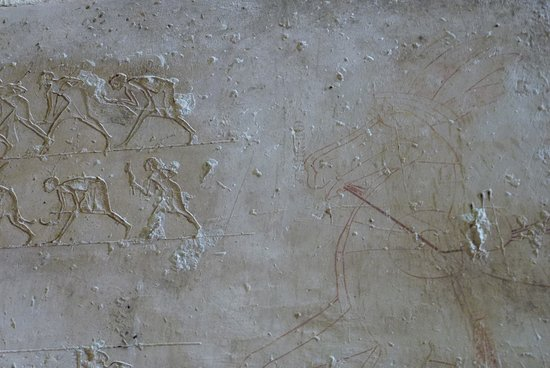 Dayr Mawas, Egypt: Uncompleted wall art of of horses (Tomb of Ahmes)