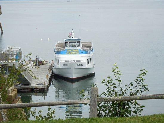 Acadian Nature Cruises: Nature Cruise