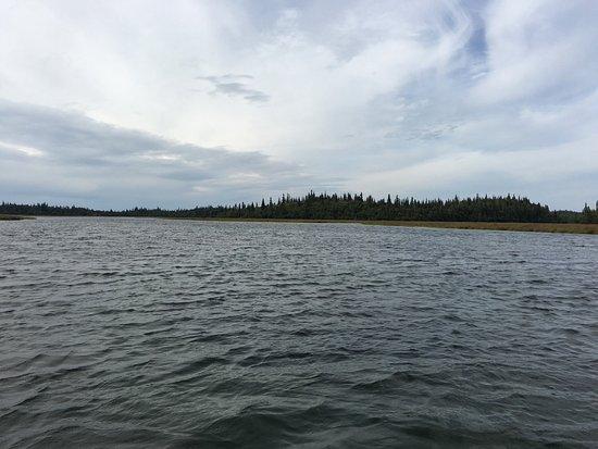 Iliamna, AK: Lake Lliamna