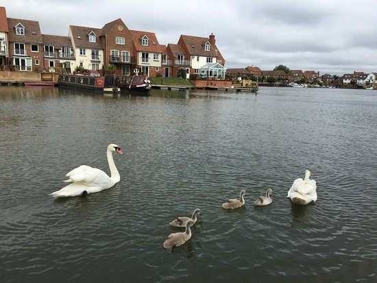 Abingdon to benson