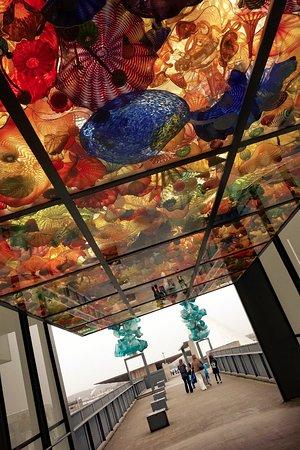 Tacoma, WA: Glass roof